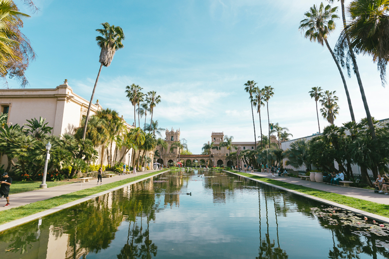Pond in Balboa Park, Palm Trees and Museums to each side reflecting into water